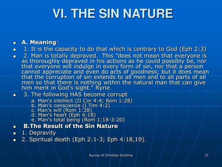 VI. THE SIN NATURE