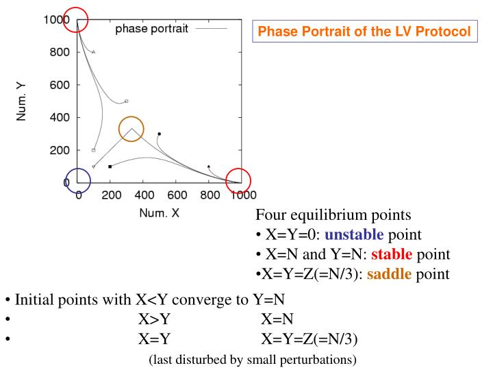 Phase Portrait of the LV Protocol