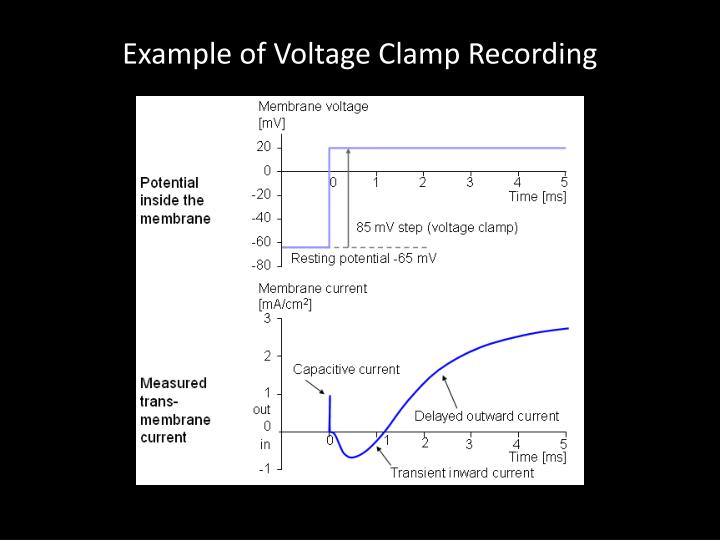 Example of Voltage Clamp Recording