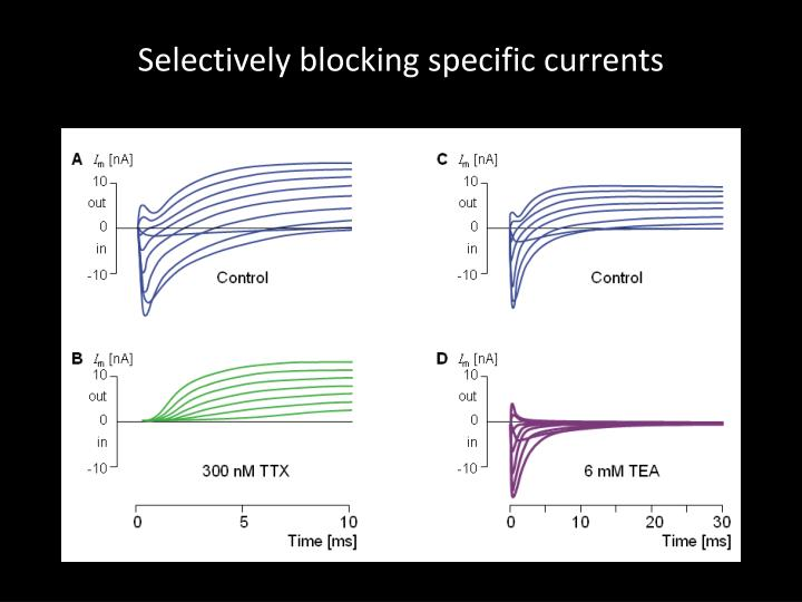 Selectively blocking specific currents