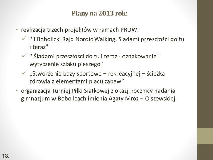 Plany na 2013 rok: