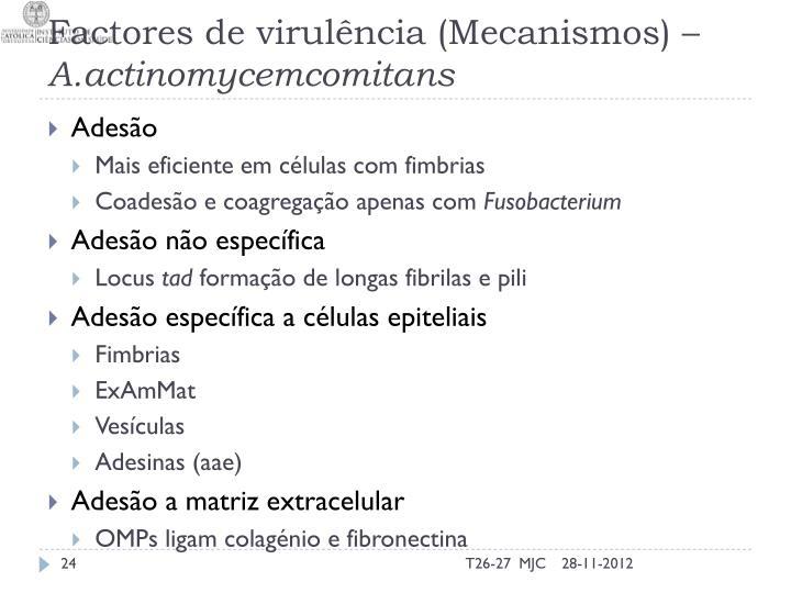 Factores de virulência (Mecanismos) –