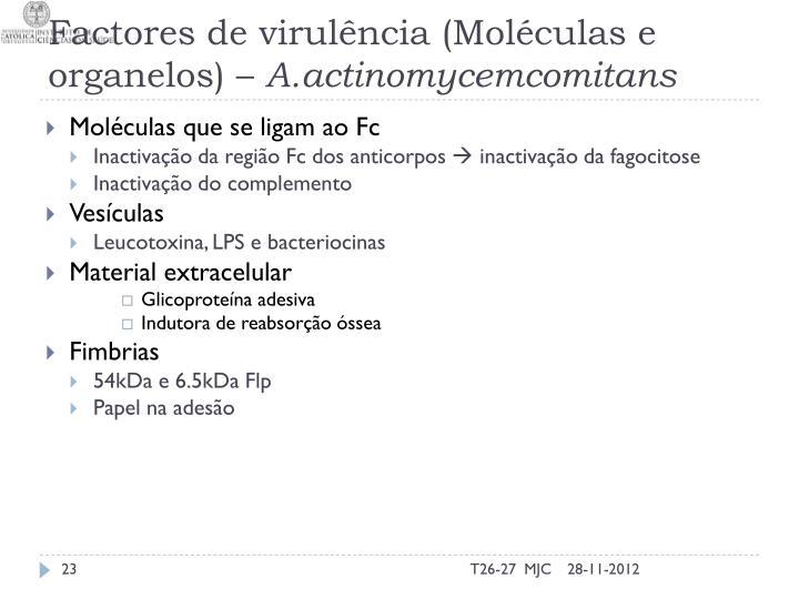 Factores de virulência (Moléculas e organelos) –