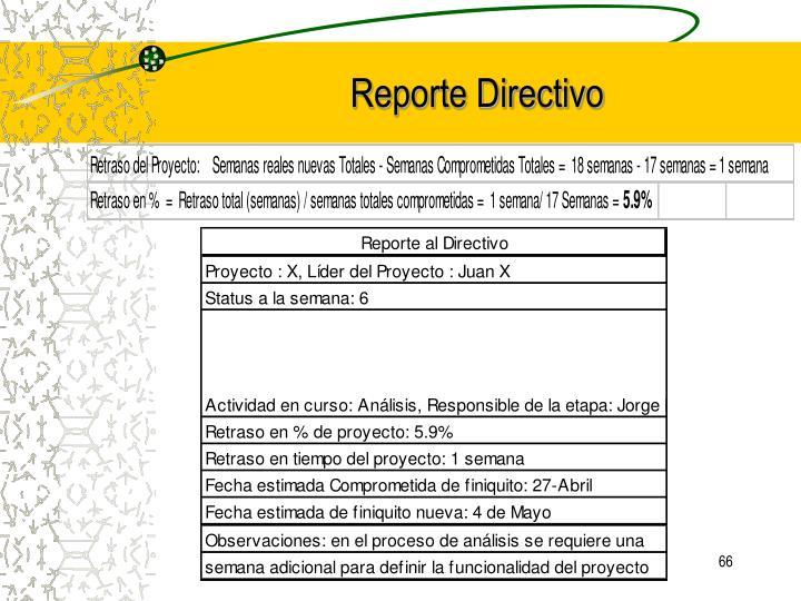 Reporte Directivo