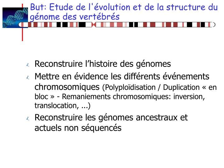 But: Etude de l'évolution et de la structure du génome des vertébrés