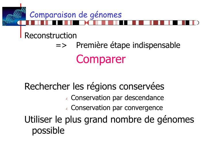 Comparaison de génomes