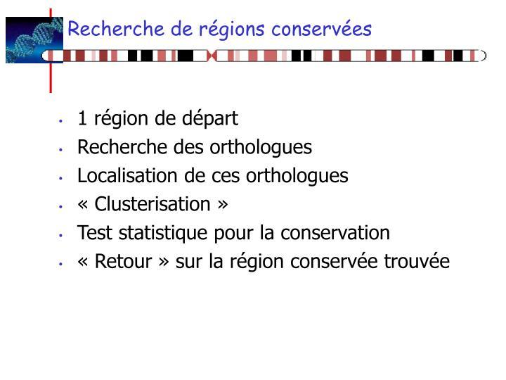 Recherche de régions conservées