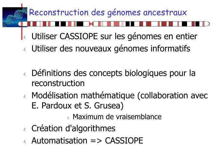 Reconstruction des génomes ancestraux