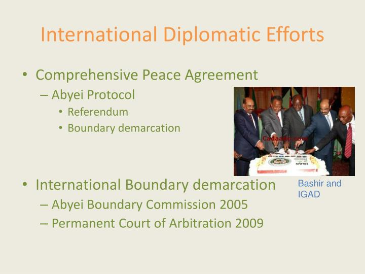 International Diplomatic Efforts