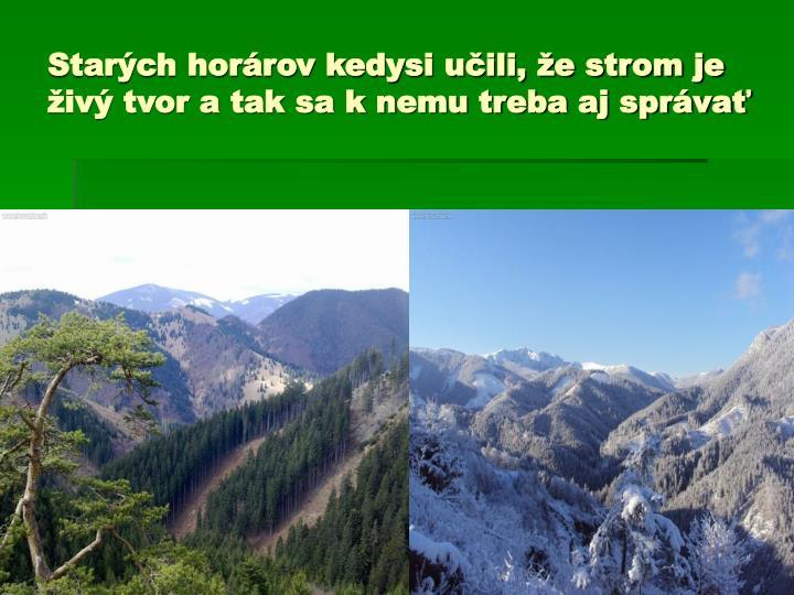 Starých horárov kedysi učili, že strom je živý tvor a tak sa k nemu treba aj správať