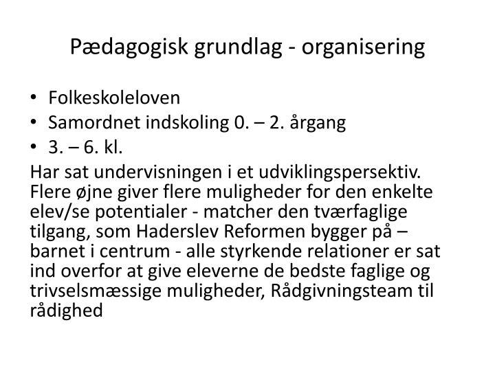 Pædagogisk grundlag - organisering