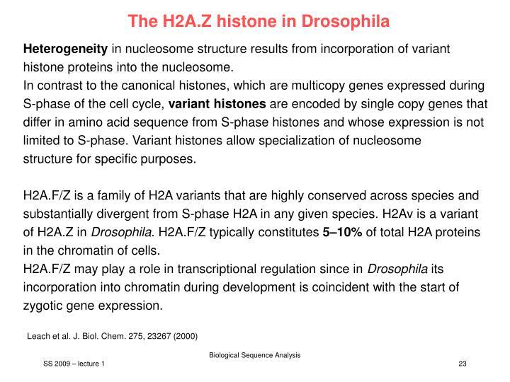 The H2A.Z histone in Drosophila