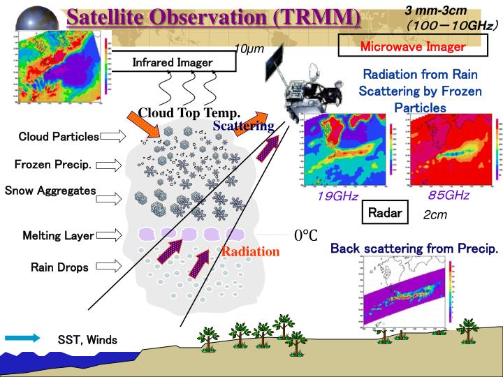 Satellite Observation (TRMM)