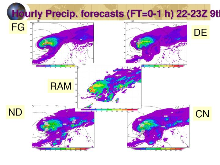 Hourly Precip. forecasts