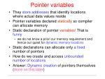 pointer variables