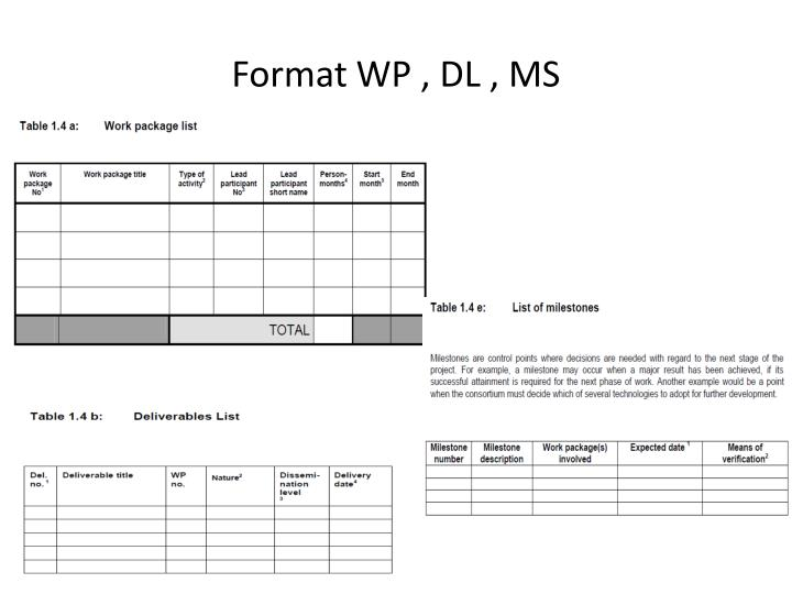 Format WP , DL , MS