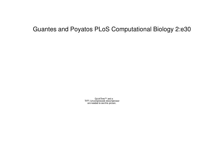 Guantes and Poyatos PLoS Computational Biology 2:e30