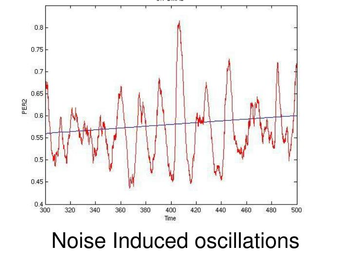 Noise Induced oscillations