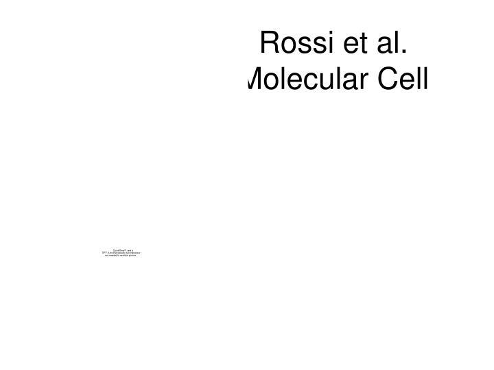 Rossi et al.