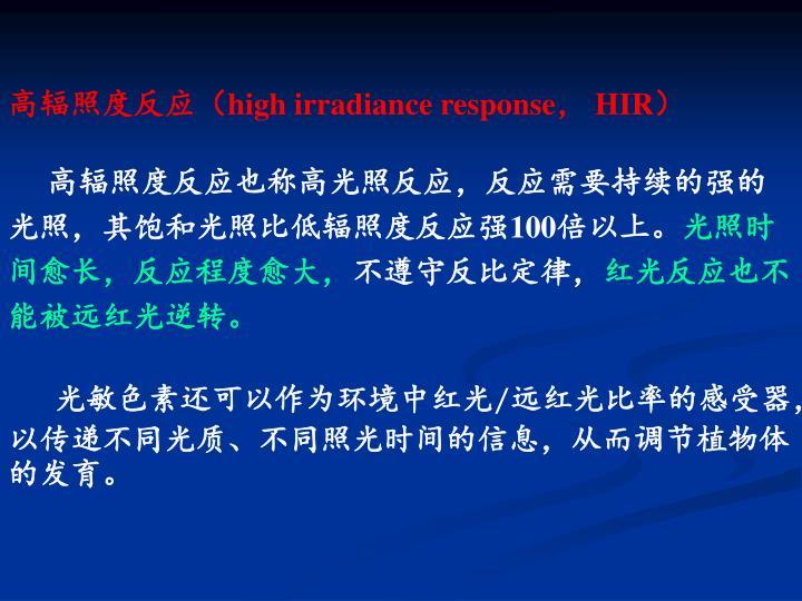 高辐照度反应(
