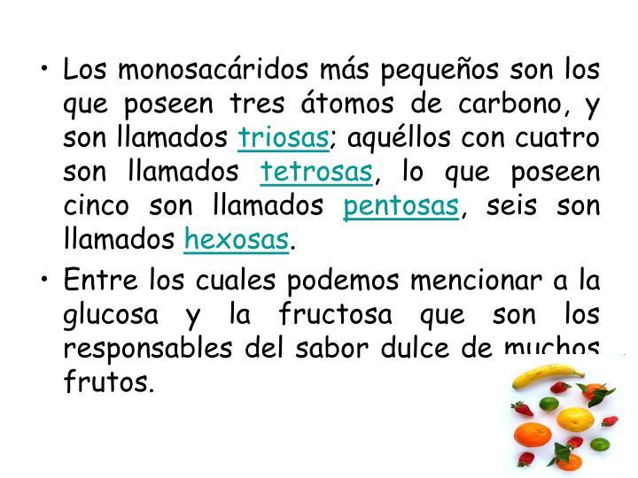 Los monosacáridos más pequeños son los que poseen tres átomos de carbono, y son llamados
