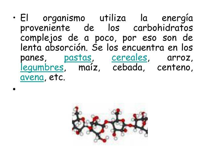 El organismo utiliza la energía proveniente de los carbohidratos complejos de a poco, por eso son de lenta absorción. Se los encuentra en los panes,