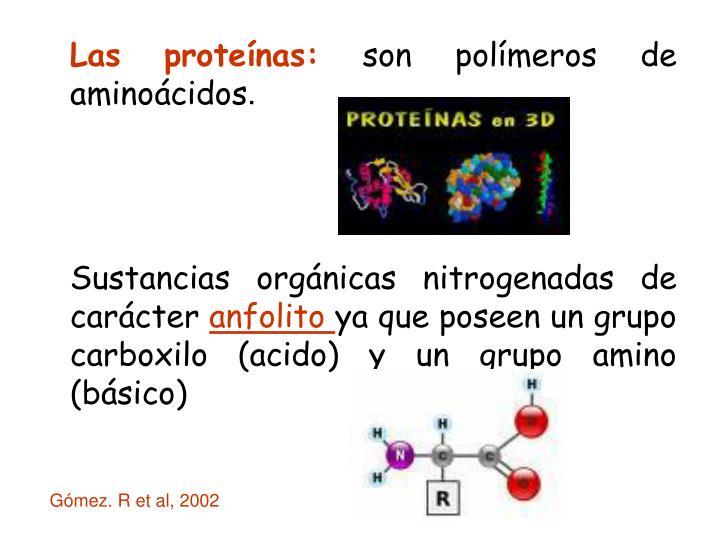 Las proteínas: