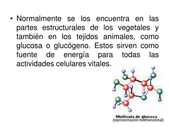 Normalmente se los encuentra en las partes estructurales de los vegetales y también en los tejidos animales, como glucosa o glucógeno. Estos sirven como fuente de energía para todas las actividades celulares vitales.