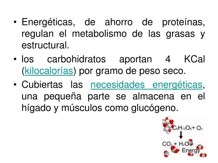 Energéticas, de ahorro de proteínas, regulan el metabolismo de las grasas y estructural.