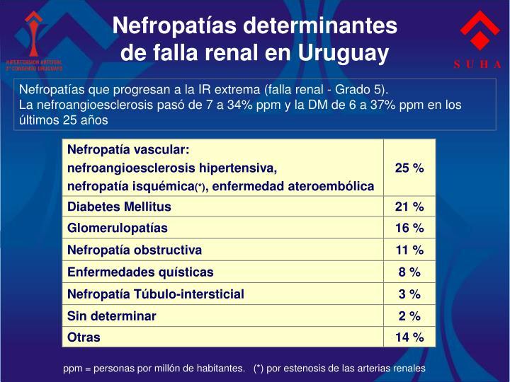 Nefropatías determinantes
