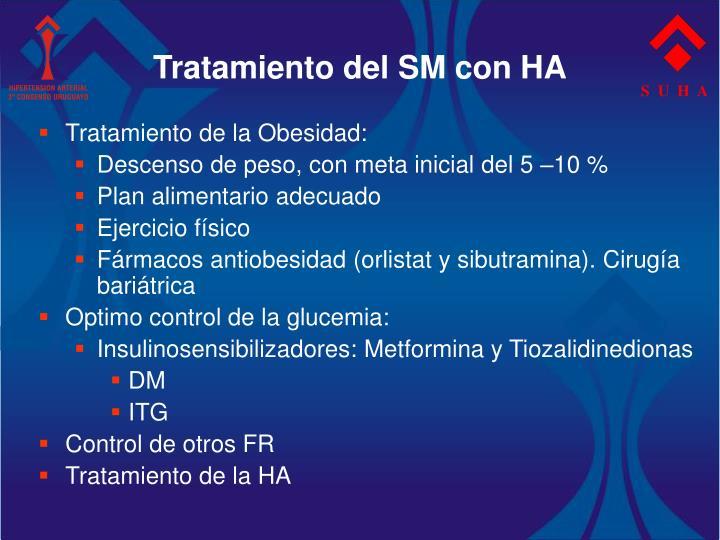 Tratamiento del SM con HA