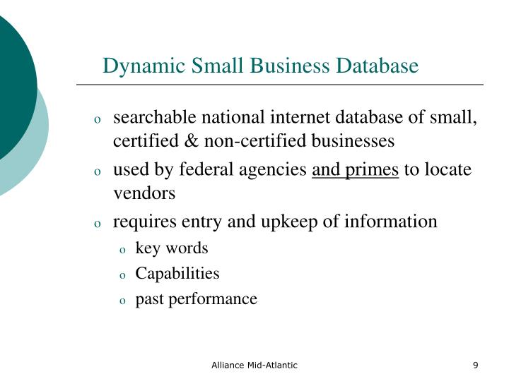 Dynamic Small Business Database