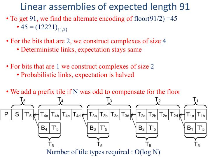 Linear assemblies of expected length 91
