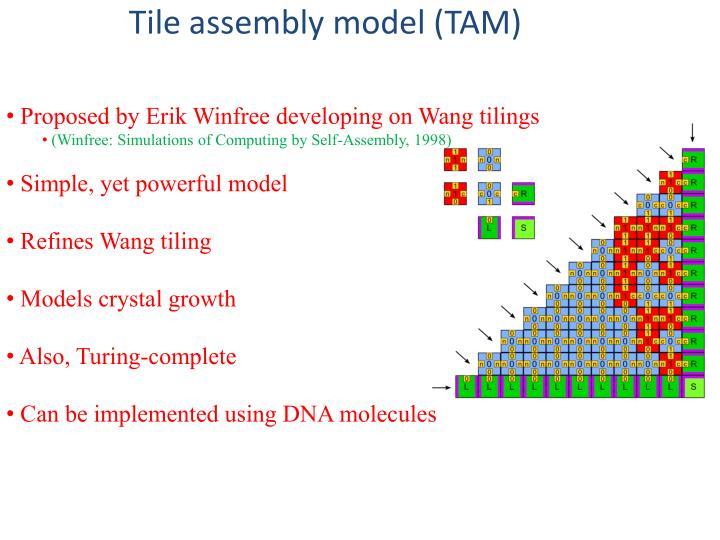 Tile assembly model (TAM)