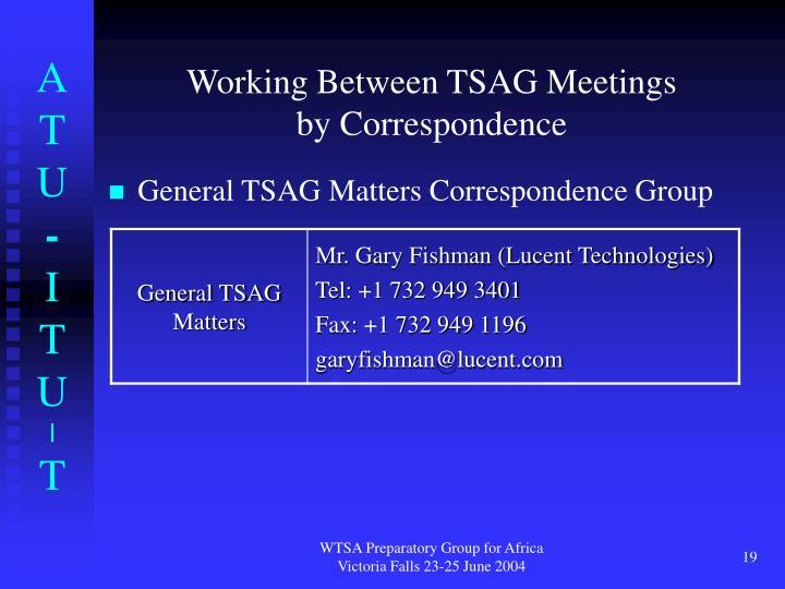 Working Between TSAG Meetings