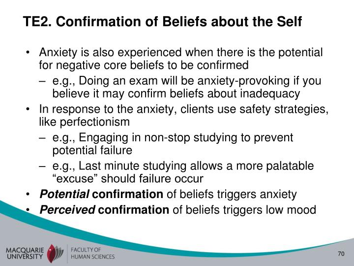 TE2. Confirmation of Beliefs about the Self