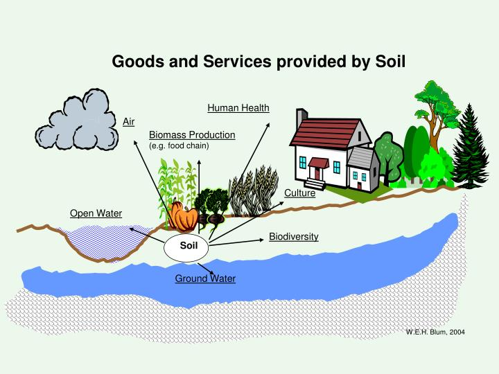 Goods and Services provided by Soil