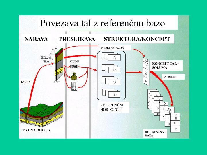 Povezava tal z referenčno bazo