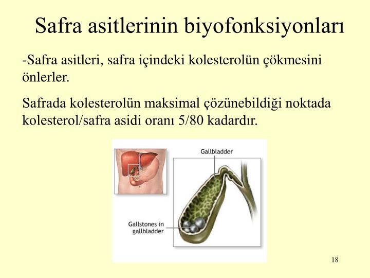 Safra asitlerinin biyofonksiyonlar