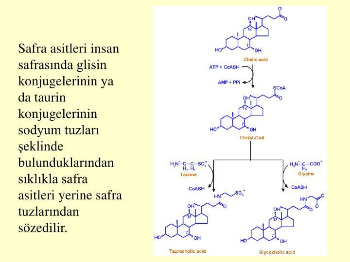Safra asitleri insan safrasnda glisin konjugelerinin ya da taurin konjugelerinin sodyum tuzlar eklinde bulunduklarndan sklkla safra asitleri yerine safra tuzlarndan szedilir.