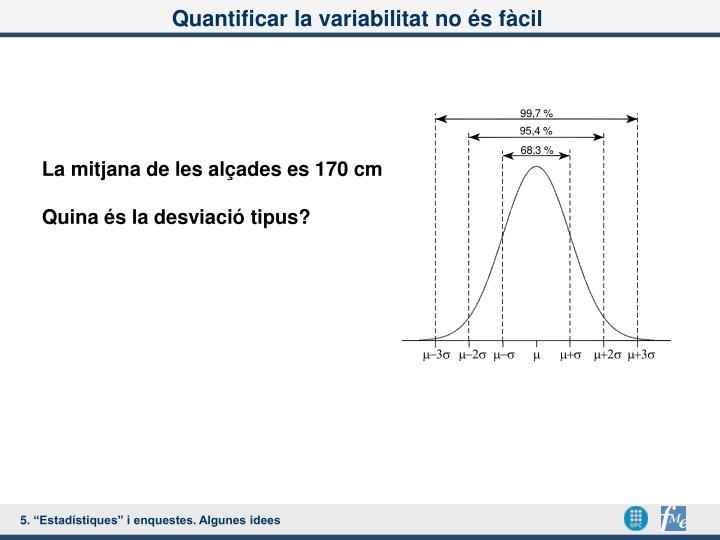Quantificar la variabilitat no és fàcil