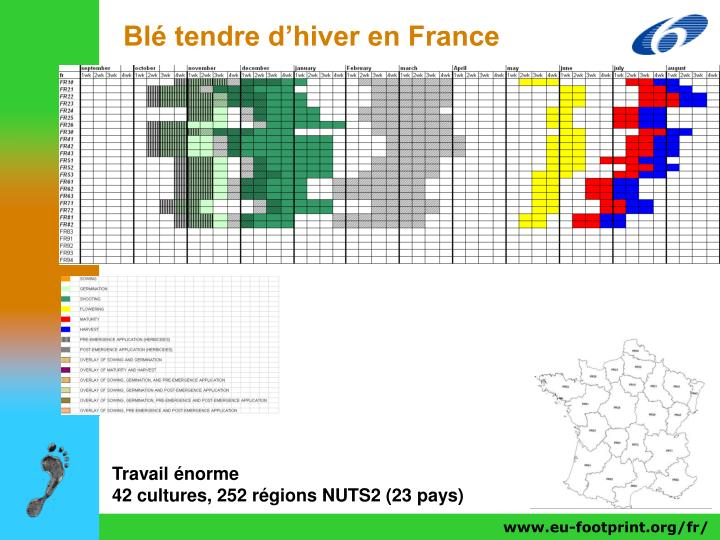 Blé tendre d'hiver en France