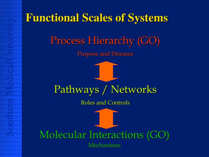 Functional Scales of Systems