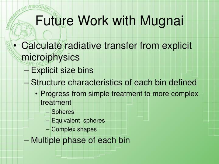 Future Work with Mugnai