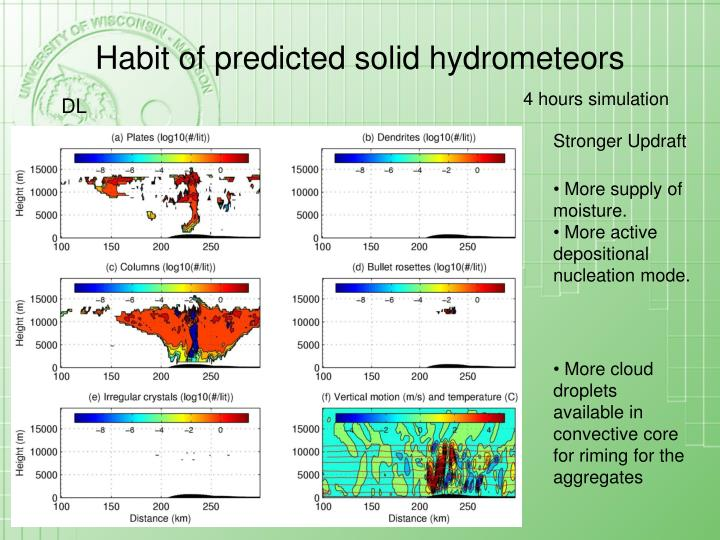 Habit of predicted solid hydrometeors
