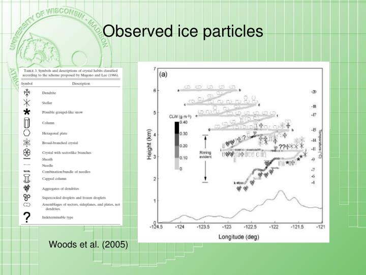 Observed ice particles