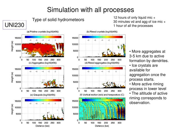 Simulation with all processes