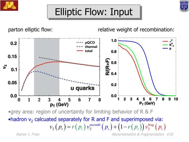 Elliptic Flow: Input