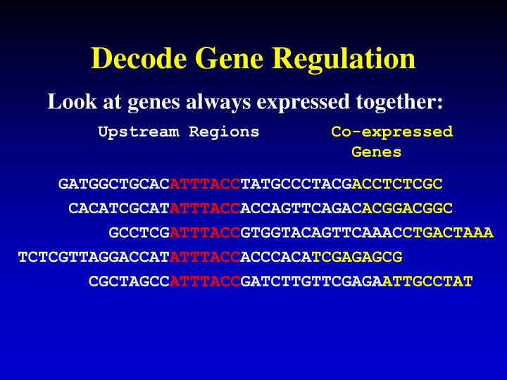 Decode Gene Regulation