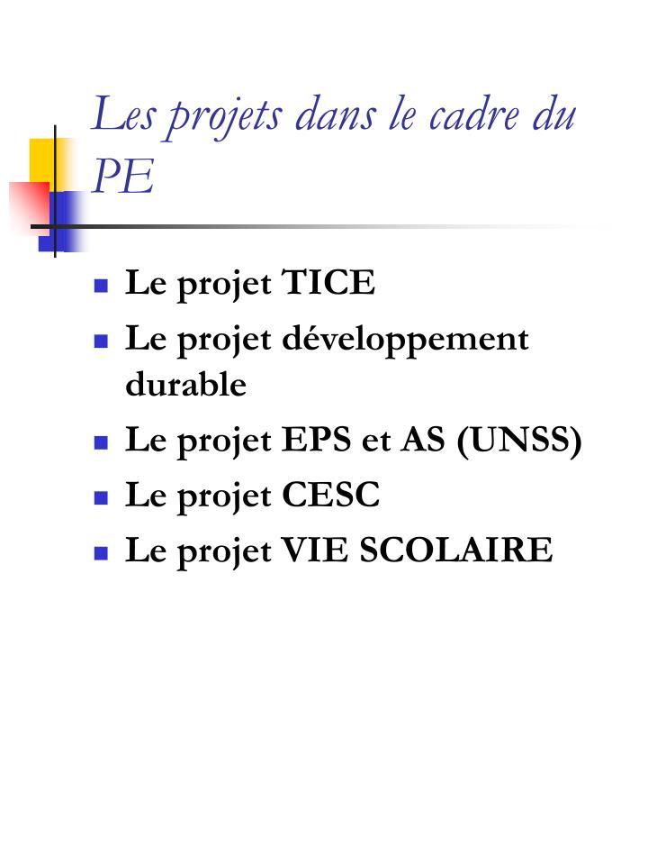 Les projets dans le cadre du PE
